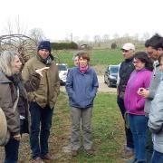 Formation Solutions Naturelles Scaap Kiwifruits de France 04/03/2019