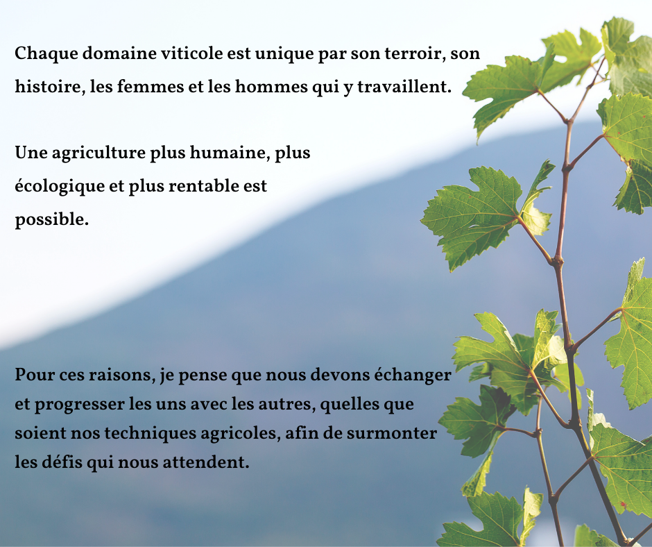 Chaque domaine viticole est unique par son terroir son histoire les femmes et les hommes qui y travaillent 1