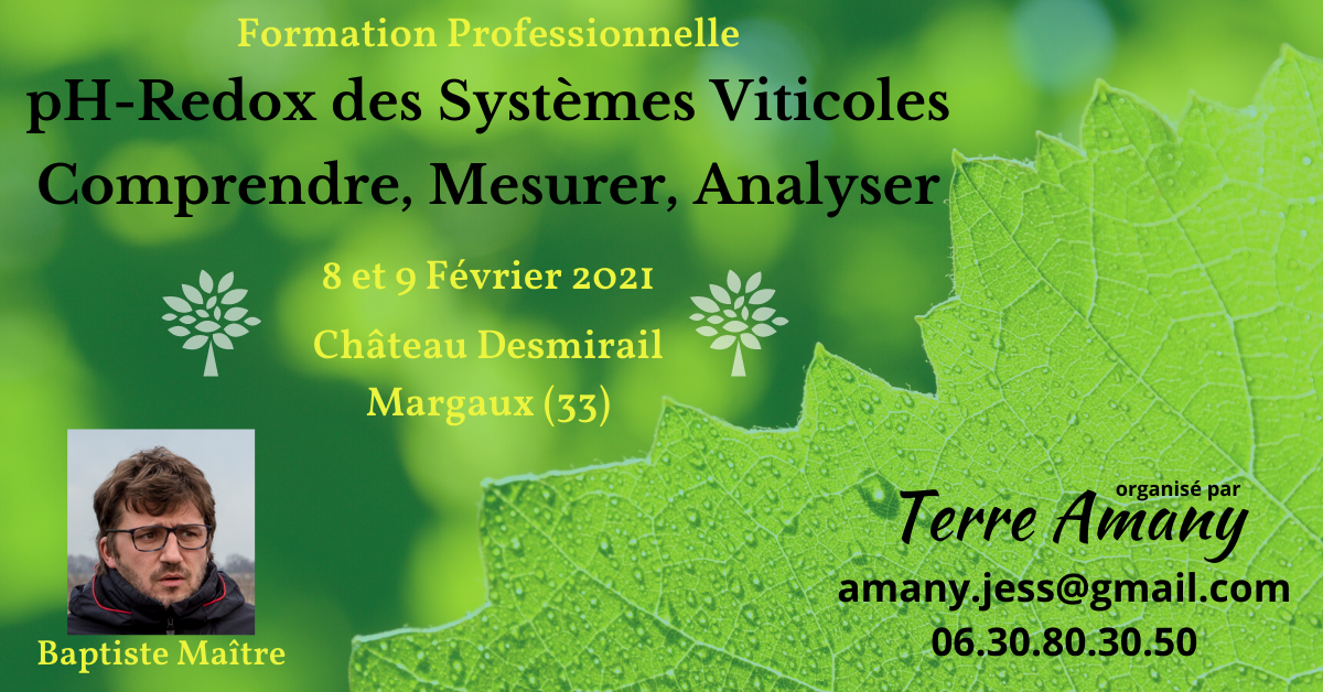 Copie de formation professionelle