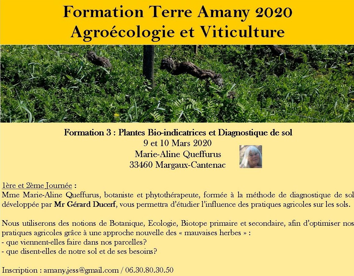 Formation3 1