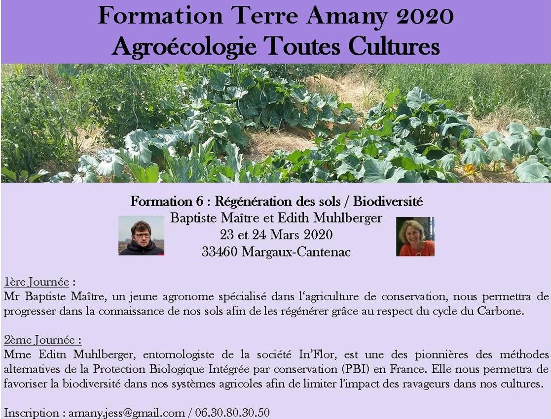 Formation6